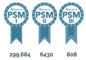 PSM holders